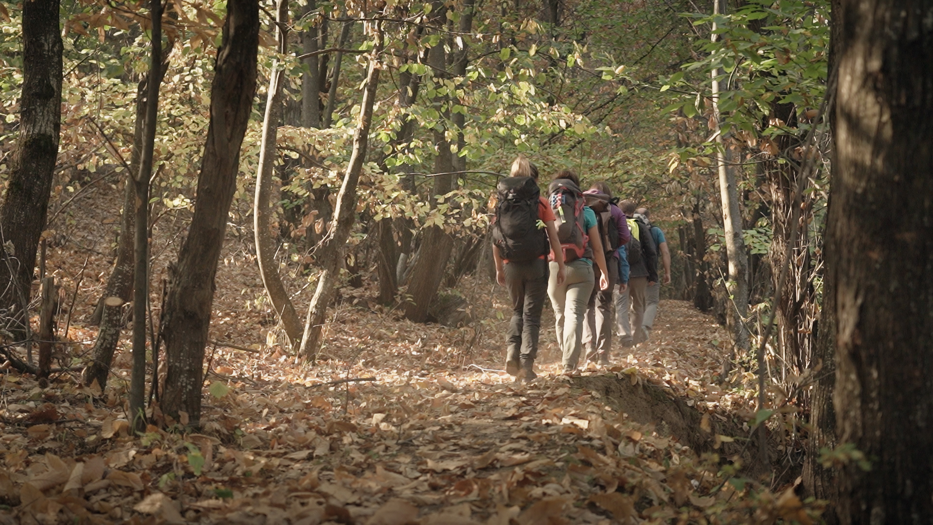 TURNING THE SHARR MOUNTAINS INTO A FAVOURITE DESTINATION FOR RURAL TOURISM